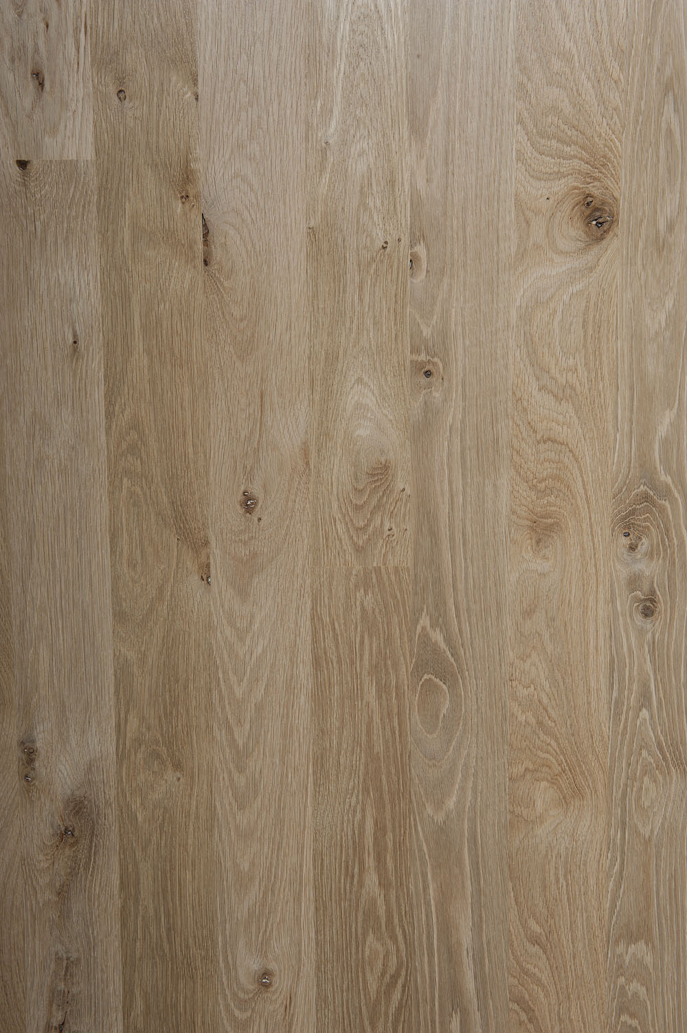 Unfinished Northern White Oak 2 Common